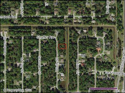 Trinity Street, North Port, FL 34291 (MLS #C7449164) :: Gate Arty & the Group - Keller Williams Realty Smart
