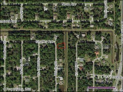 Trinity Street, North Port, FL 34291 (MLS #C7449165) :: Gate Arty & the Group - Keller Williams Realty Smart