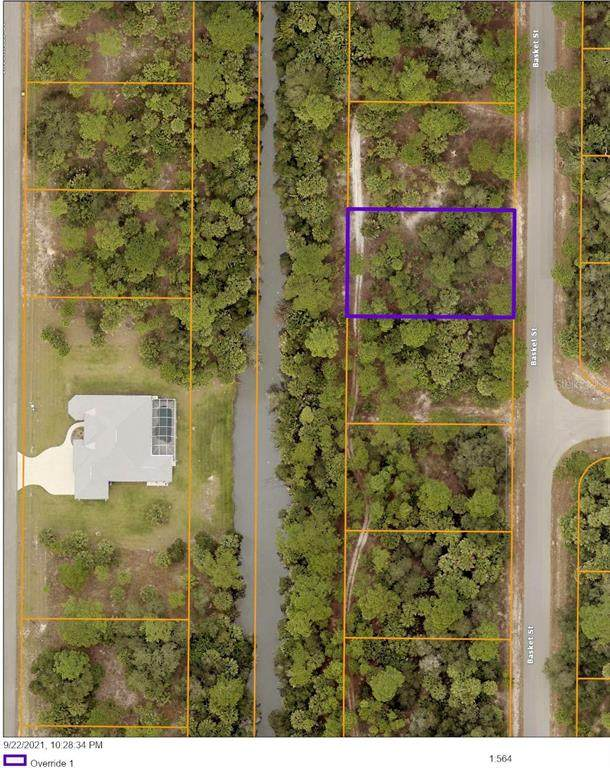 Basket Street, North Port, FL 34288 (MLS #C7449298) :: Dalton Wade Real Estate Group