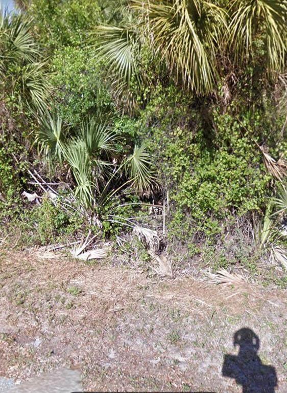 974 Sable Circle SE, Palm Bay, FL 32909 (MLS #C7449465) :: Delgado Home Team at Keller Williams