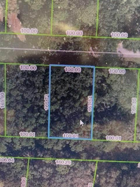 1721 Sentinel Point Road, Sebring, FL 33875 (MLS #C7449683) :: Everlane Realty