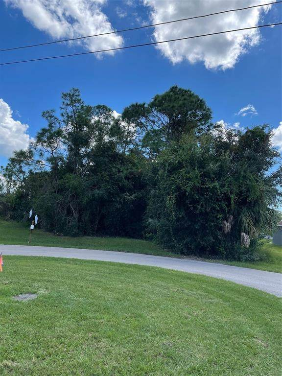 294 Mendoza Street, Punta Gorda, FL 33983 (MLS #C7450023) :: Delgado Home Team at Keller Williams