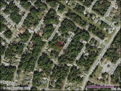 Cornsilk Terrace, North Port, FL 34286 (MLS #C7450148) :: Global Properties Realty & Investments