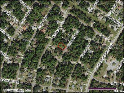 Cornsilk Terrace, North Port, FL 34286 (MLS #C7450149) :: Global Properties Realty & Investments