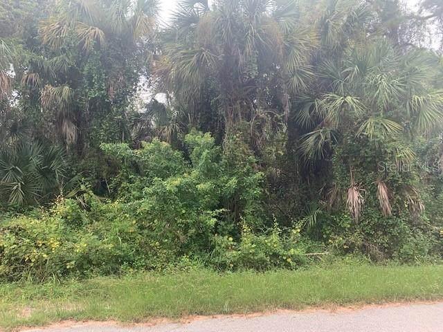 Littlefield Lane, North Port, FL 34288 (MLS #C7450218) :: Pepine Realty