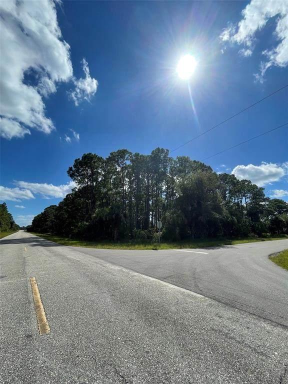 12325 Chamberlain Boulevard, Port Charlotte, FL 33953 (MLS #C7450332) :: Armel Real Estate