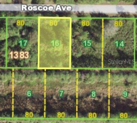 23493 Roscoe Avenue, Port Charlotte, FL 33980 (MLS #C7450420) :: Orlando Homes Finder Team