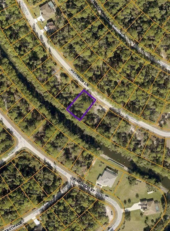 Hagerick Lane, North Port, FL 34288 (MLS #C7450604) :: Sarasota Property Group at NextHome Excellence