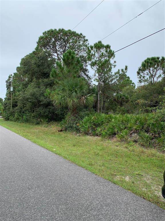285 Berthoud Street, Port Charlotte, FL 33953 (MLS #C7450665) :: The Heidi Schrock Team
