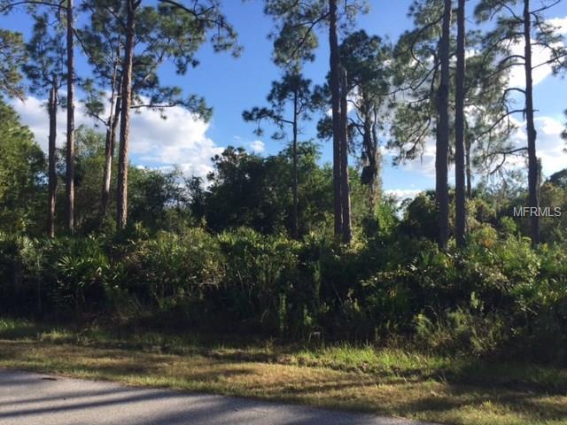 23391 Lily Avenue, Port Charlotte, FL 33980 (MLS #D5921894) :: Carrington Real Estate Services