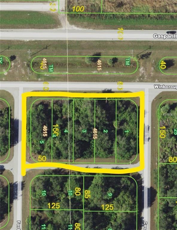 10010 Winborough Drive, Port Charlotte, FL 33981 (MLS #D5922315) :: The BRC Group, LLC