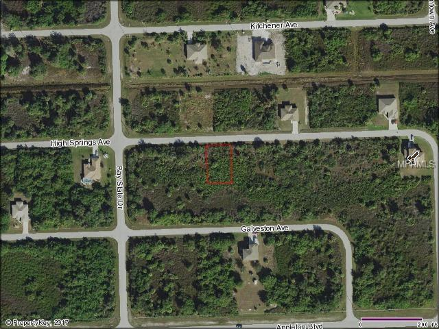 13395 High Springs Avenue, Port Charlotte, FL 33981 (MLS #D5922560) :: Premium Properties Real Estate Services