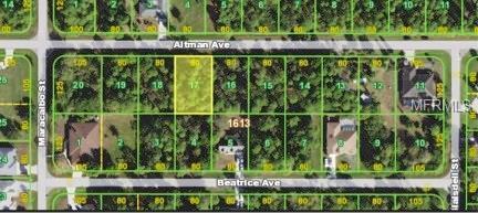 23447 Altman Avenue, Port Charlotte, FL 33980 (MLS #D5923867) :: Medway Realty