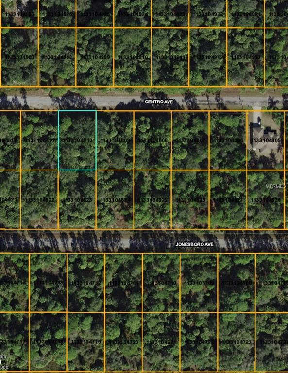 Centro Avenue, North Port, FL 34288 (MLS #D6100193) :: KELLER WILLIAMS CLASSIC VI
