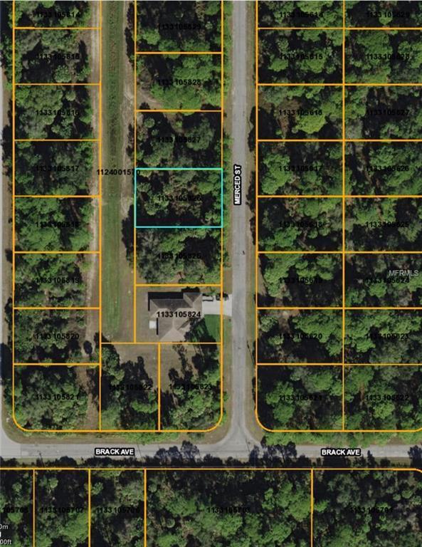Merced Street, North Port, FL 34288 (MLS #D6100194) :: KELLER WILLIAMS CLASSIC VI