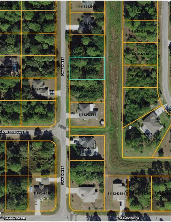 Craleigh Street, North Port, FL 34288 (MLS #D6100206) :: Zarghami Group