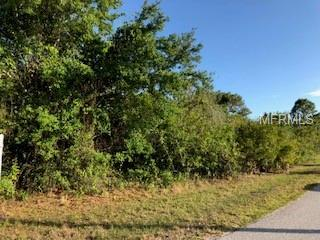 13287 Commonwealth Avenue, Port Charlotte, FL 33981 (MLS #D6100218) :: Medway Realty