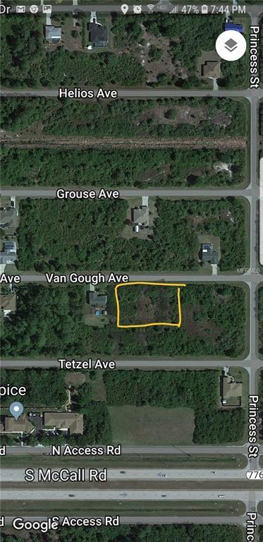 12031 Van Gough Avenue, Port Charlotte, FL 33981 (MLS #D6100910) :: The Lockhart Team
