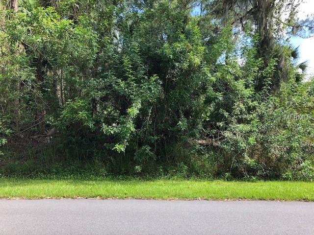 Lubec Avenue, North Port, FL 34287 (MLS #D6101148) :: Mark and Joni Coulter | Better Homes and Gardens