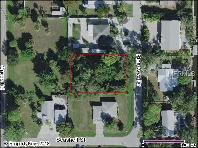 9161 Pine Cove Road, Englewood, FL 34224 (MLS #D6101423) :: Griffin Group