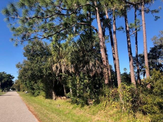 Fordham Road, Venice, FL 34293 (MLS #D6104653) :: Homepride Realty Services