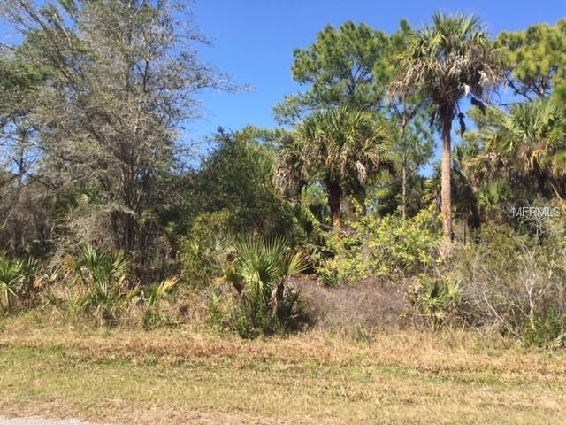 1531 Norwalk Terrace, Port Charlotte, FL 33953 (MLS #D6105152) :: RE/MAX Realtec Group
