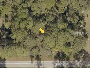 Lot 19 Hackley Road, North Port, FL 34291 (MLS #D6107001) :: The Duncan Duo Team