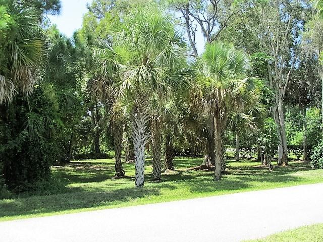 10111 Creekside Drive, Placida, FL 33946 (MLS #D6108167) :: The BRC Group, LLC