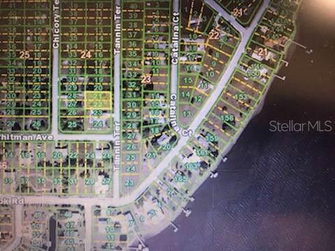 3083 Tannin Terrace, Punta Gorda, FL 33983 (MLS #D6110799) :: GO Realty