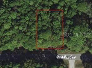 Scanlon Avenue, North Port, FL 34291 (MLS #D6110833) :: Carmena and Associates Realty Group