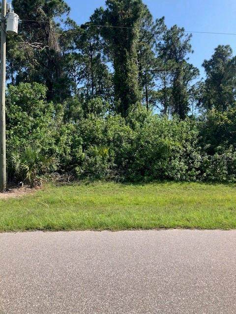 303 Antis Drive, Rotonda West, FL 33947 (MLS #D6112441) :: Delta Realty Int