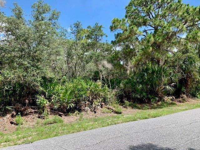 1011 Bowman Terrace, Port Charlotte, FL 33953 (MLS #D6112677) :: Medway Realty