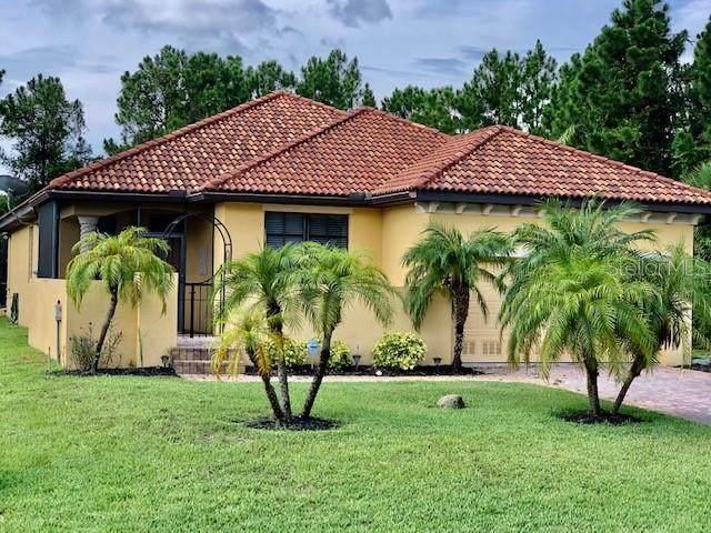 113 Apollo Drive, Rotonda West, FL 33947 (MLS #D6112893) :: Burwell Real Estate