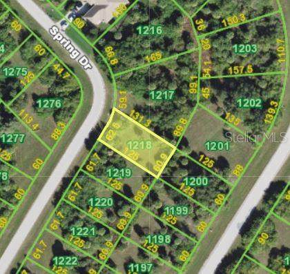 134 Spring Drive, Rotonda West, FL 33947 (MLS #D6113237) :: Bustamante Real Estate