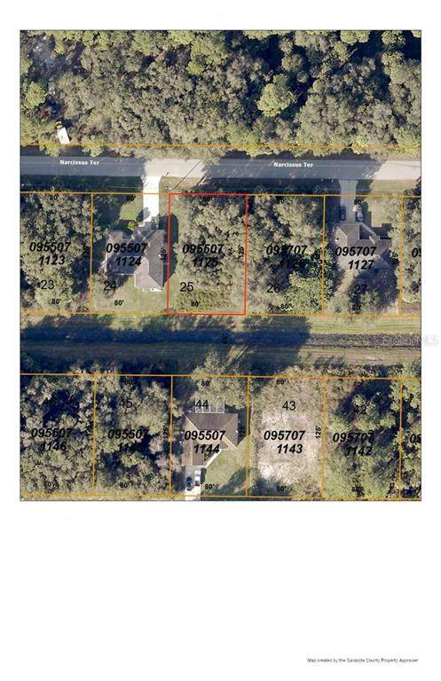 Narcissus Terrace, North Port, FL 34286 (MLS #D6113557) :: Bustamante Real Estate
