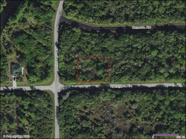 14154 Hydrangea Avenue, Port Charlotte, FL 33953 (MLS #D6116091) :: EXIT King Realty