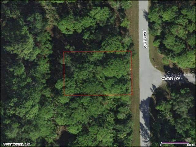495 Halloran Street, Port Charlotte, FL 33953 (MLS #D6116802) :: Armel Real Estate