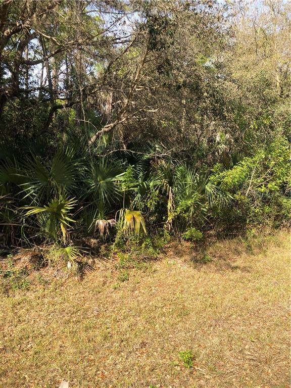 192 Friendly Street, Port Charlotte, FL 33953 (MLS #D6117011) :: Team Bohannon Keller Williams, Tampa Properties