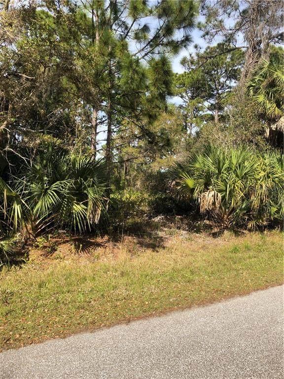335 Spaulding Street, Port Charlotte, FL 33953 (MLS #D6117013) :: Team Bohannon Keller Williams, Tampa Properties