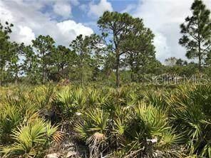 104 Gem Court, Rotonda West, FL 33947 (MLS #D6118018) :: Vacasa Real Estate