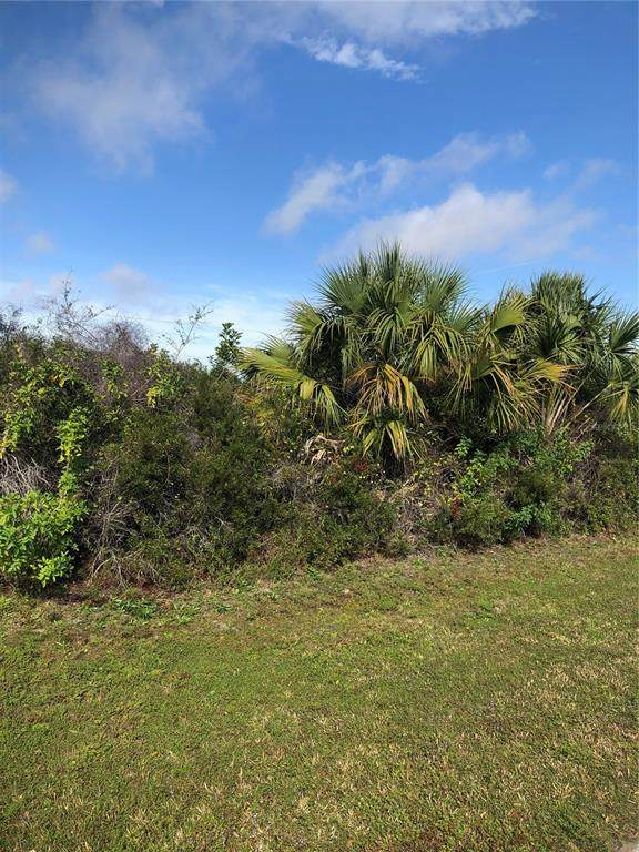 Sago Palm Road - Photo 1