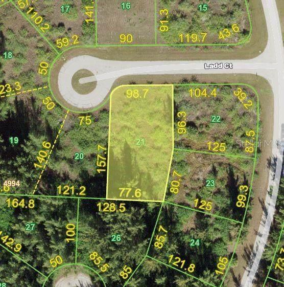 16107 Ladd Court, Port Charlotte, FL 33981 (MLS #D6119224) :: Premium Properties Real Estate Services