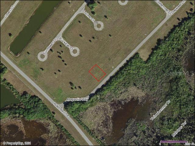 5 Magnolia Way, Placida, FL 33946 (MLS #D6119551) :: Everlane Realty