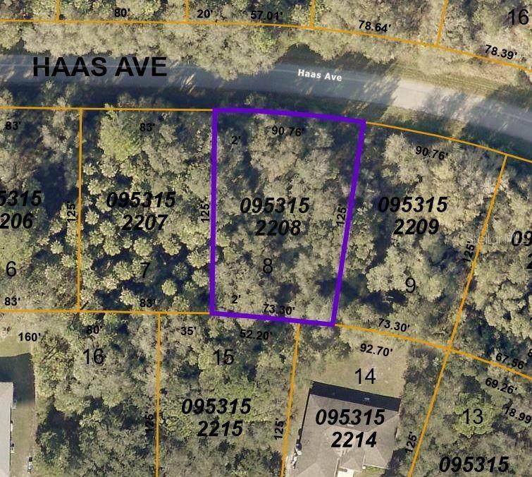 Lot 8 Haas Avenue - Photo 1