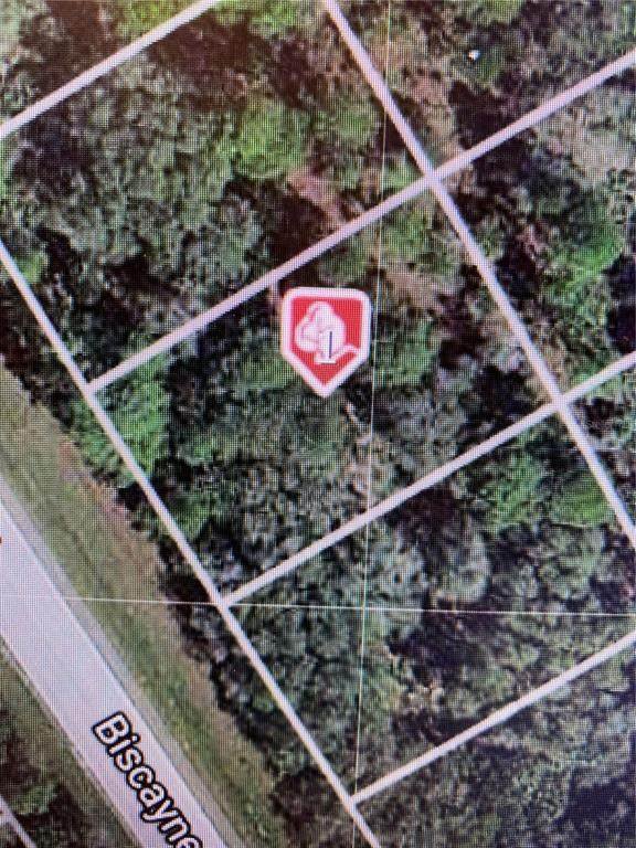 1740 Biscayne Drive, Port Charlotte, FL 33953 (MLS #D6121415) :: The Paxton Group
