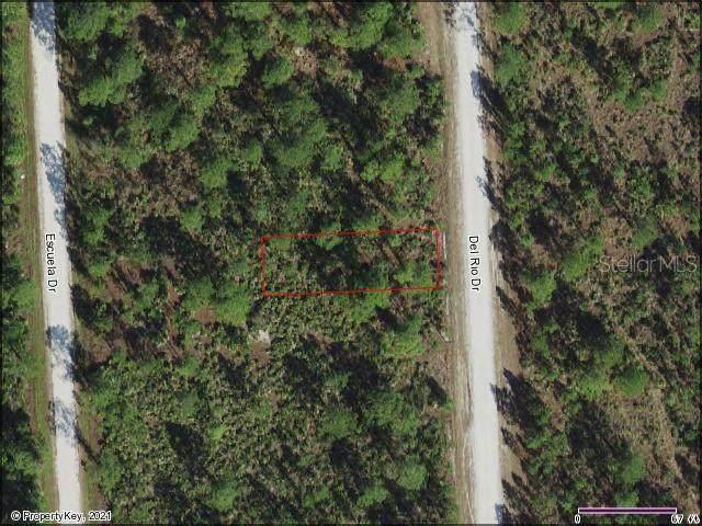 12299 Del Rio Drive, Punta Gorda, FL 33955 (MLS #D6121433) :: Gate Arty & the Group - Keller Williams Realty Smart