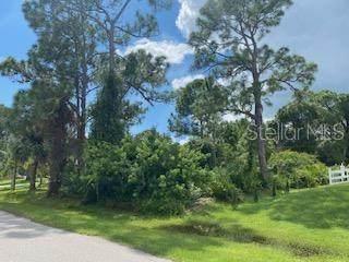 3133 Lich Street, Port Charlotte, FL 33980 (MLS #D6121492) :: Globalwide Realty