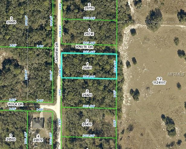 8260 Cashew Drive, Webster, FL 33597 (MLS #E2205974) :: Premium Properties Real Estate Services
