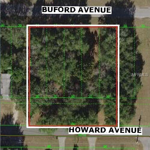 Buford Avenue, Dade City, FL 33525 (MLS #E2400183) :: The Duncan Duo Team