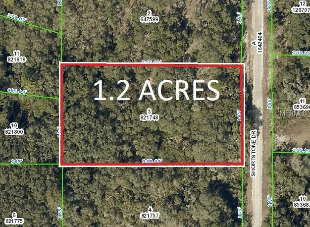Shortstone Drive, Webster, FL 33597 (MLS #E2400394) :: Lovitch Realty Group, LLC